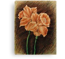 Orange Daffodils  Canvas Print