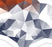 Denver Broncos Triangles Sticker