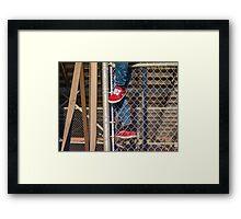 Climb The Fence Framed Print