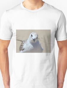 Looking At Each Other Unisex T-Shirt