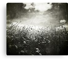 Counting Flowers Like They Were Stars Canvas Print