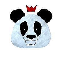 Hail Panda Photographic Print