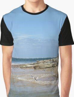 Seals On Norfolk Coast Graphic T-Shirt