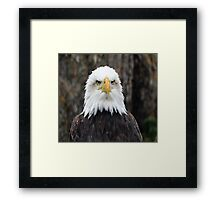 Adler: Face to Face Framed Print