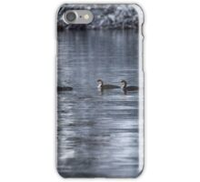 Young Loons in Auke Bay iPhone Case/Skin