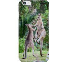 Male Kangaroos Fighting iPhone Case/Skin