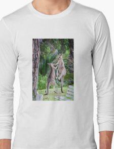 Male Kangaroos Fighting Long Sleeve T-Shirt