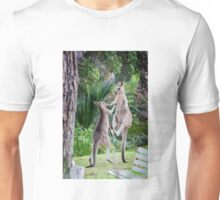Male Kangaroos Fighting Unisex T-Shirt