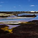 A Lake in The Nullarbor Destert by myraj
