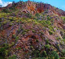 Anticline. by Bette Devine