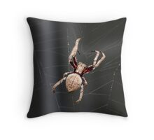 WEB Weaver Throw Pillow