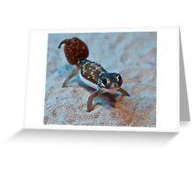 Smooth Knob- tailed Gecko Greeting Card
