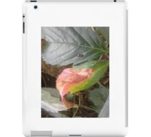 Daily enhancements iPad Case/Skin