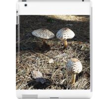 Natural Mushrooms iPad Case/Skin