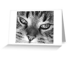 Look into my eyes.... you cannot resist me!! Greeting Card