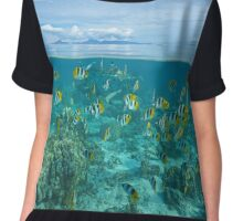 Island with shoal of fish and shark underwater Chiffon Top