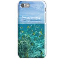Island with shoal of fish and shark underwater iPhone Case/Skin