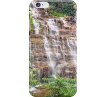Hector Falls Cascade iPhone Case/Skin