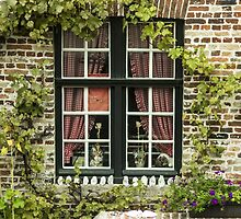 Green Window in Brugge - Travel Photography/ Object Photography by JuliaRokicka