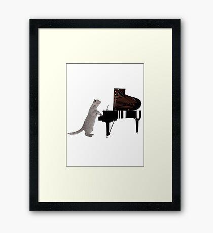 Piano Cat - Meowsicians Framed Print