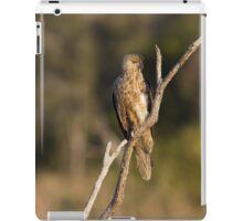 Dusk Kite iPad Case/Skin