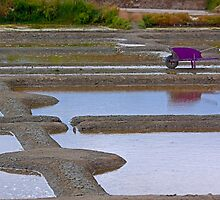 Marais Salants de Grande - Salt Marshes of Grande by Buckwhite