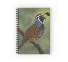 Californian Quail Spiral Notebook