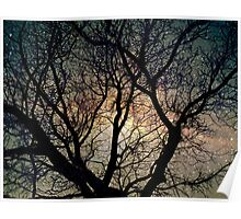 Tree silhouette with stars. Poster