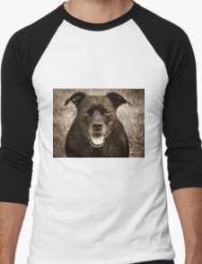 PitBull Men's Baseball ¾ T-Shirt