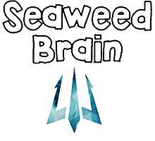 seaweed brain Photographic Print