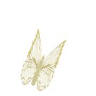 Gilded Butterfly see also Golden Butterflies by KazM