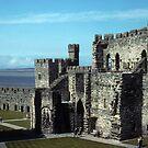 Caernarfon Castle by nealbarnett