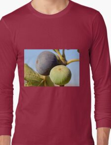 fruit and leaves of a fig tree Long Sleeve T-Shirt