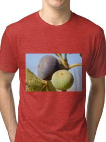 fruit and leaves of a fig tree Tri-blend T-Shirt