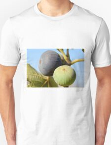 fruit and leaves of a fig tree Unisex T-Shirt