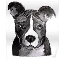 Good Dog Pit Bull Poster
