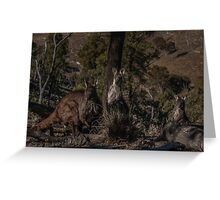 Old Man Wallaby and his Family Greeting Card