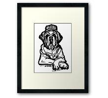 Saint Bernard Swag Framed Print