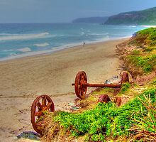 Rusted Relics on Dudley Beach by Michael Matthews