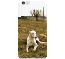 Earl the greyhound iPhone Case/Skin