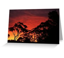 Stanwell Tops Sunset Greeting Card