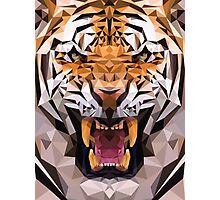 Raw tiger Photographic Print