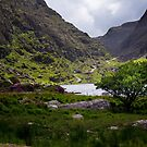 Gap of Dunloe by Phillip Cullinane
