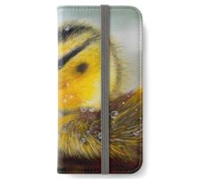 La toilette du caneton iPhone Wallet/Case/Skin