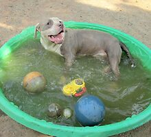 Yes I'm Dirty.....But I'm Having So Much Fun! by Ginny York