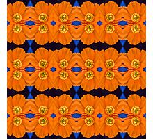 Orange Poppy Motif (VNS.10) Photographic Print