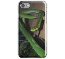 Red-Tailed Green Ratsnake iPhone Case/Skin