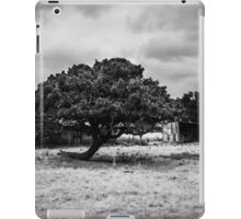 Country property iPad Case/Skin