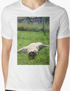 Bla Mens V-Neck T-Shirt