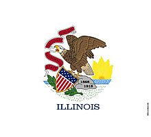 Illinois State Flag  Photographic Print